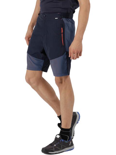 Regatta Sungari Shorts Men Navy/Dark Denim